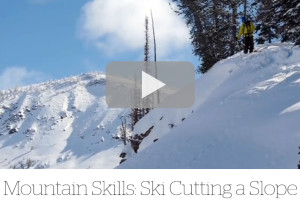 skicut_feature