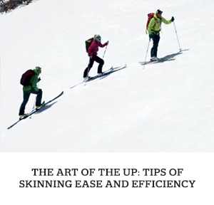 skin_feature