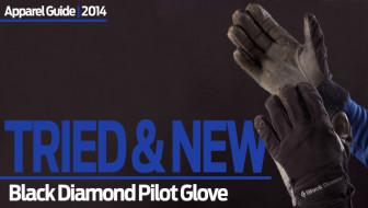 Palm Pilot: Black Diamond Pilot Glove