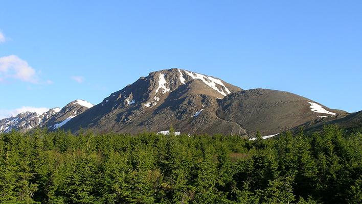 Summer Stashes: Flattop Mountain