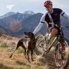 Meet The Mayor: Ogden, Utah's Skiing, Biking High Chief