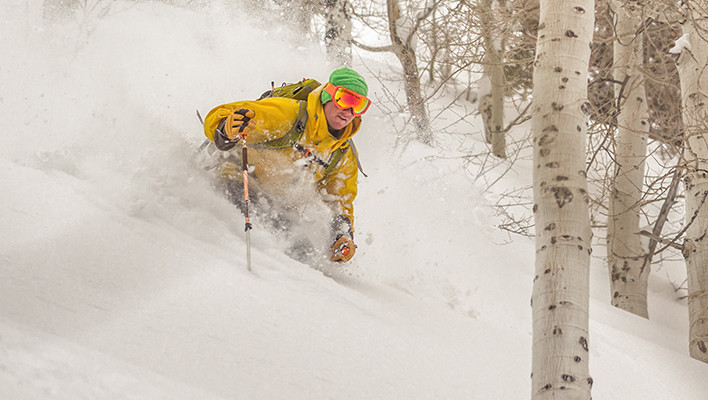 Photo of the Day: Forests and Pow