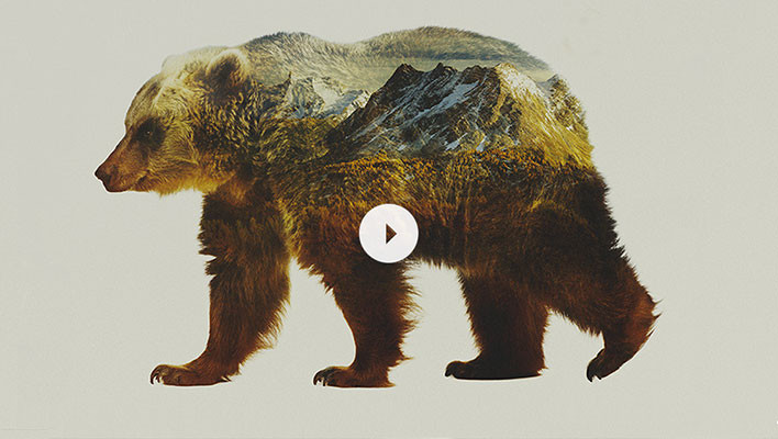 "Patagonia and Sweetgrass Productions Release ""Jumbo Wild"" Trailer"