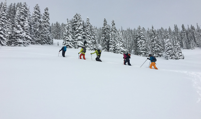 The group making its way up the skin track with Donny Roth leading the way. [Photo] Jamie Starr
