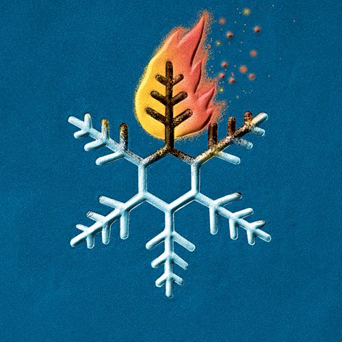 snowflake_burn_embed